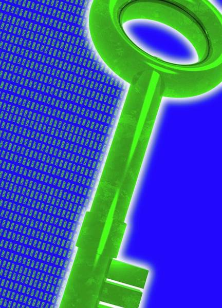 Wall Art - Photograph - Digital Security by Victor Habbick Visions/science Photo Library