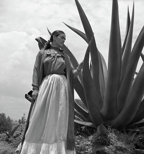 Wall Art - Photograph - Frida Kahlo by Granger