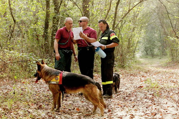 Service Dog Photograph - Mountain Rescue Workers by Mauro Fermariello/science Photo Library