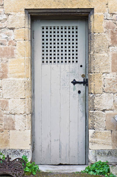 Cellar Wall Art - Photograph - Old Door by Tom Gowanlock