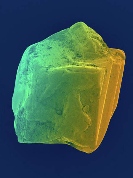 Uncut Photograph - Sapphire by Dennis Kunkel Microscopy/science Photo Library