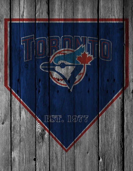 Blue Jay Photograph - Toronto Blue Jays by Joe Hamilton