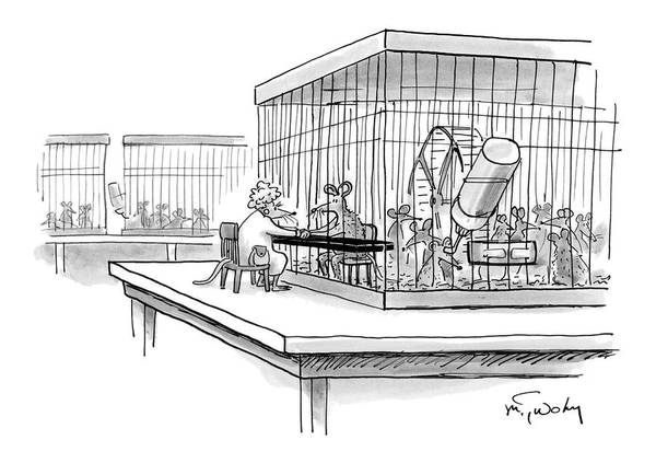 Experiment Drawing - New Yorker October 30th, 2006 by Mike Twohy