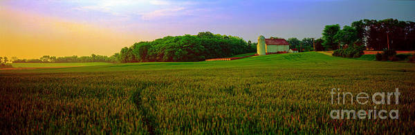 Conley Road, Spring, Field, Barn   Art Print