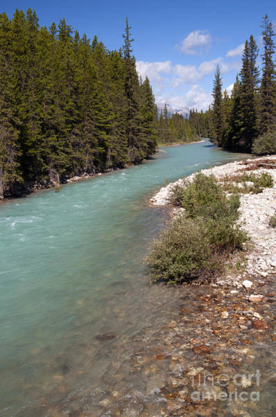 Photograph - 850p Bow River Canada by NightVisions