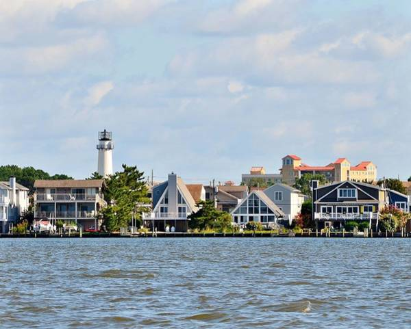 Photograph - 8x10 Fenwick Island Lighthouse From Assawoman Canal by Kim Bemis