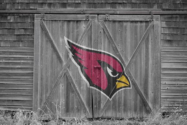 Wall Art - Photograph - Arizona Cardinals by Joe Hamilton