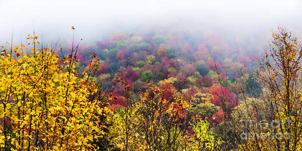 Photograph - Autumn Highland Scenic Highway by Thomas R Fletcher