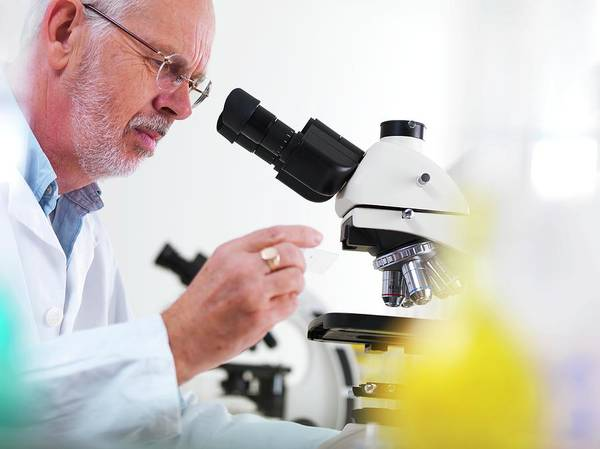 Examine Photograph - Biological Research by Tek Image/science Photo Library