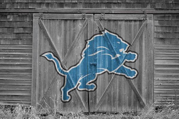 Wall Art - Photograph - Detroit Lions by Joe Hamilton