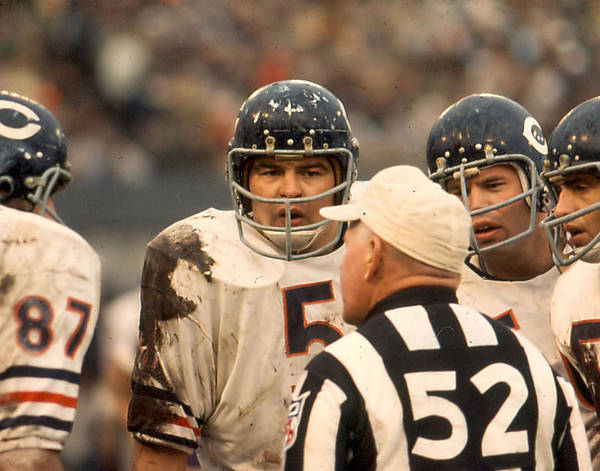 Wall Art - Photograph - Dick Butkus by Retro Images Archive