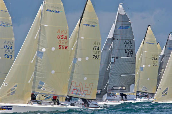 Photograph - Melges Start by Steven Lapkin