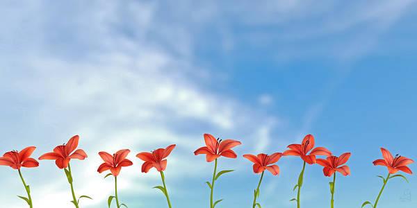 9 Lilies Art Print