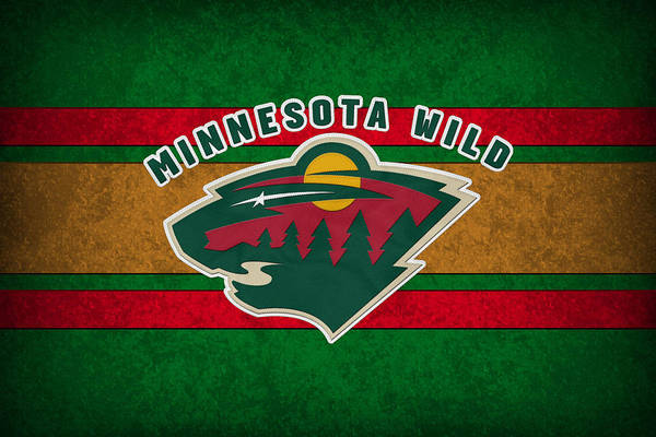Arena Photograph - Minnesota Wild by Joe Hamilton