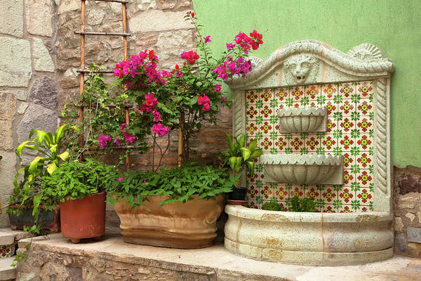 Flower Beds Photograph - North America, Mexico, Guanajuato by John and Lisa Merrill