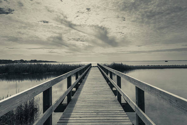 Corolla Photograph - North Carolina, Outer Banks National by Walter Bibikow