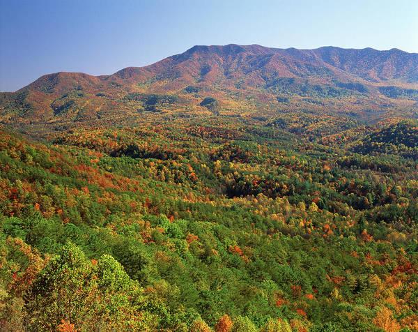 Mt. Adams Photograph - Usa, North Carolina, Great Smoky by Adam Jones