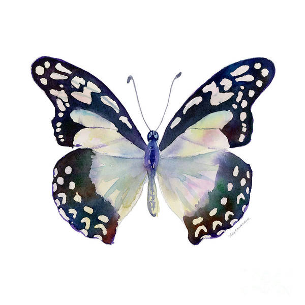 Wall Art - Painting - 90 Angola White Lady Butterfly by Amy Kirkpatrick