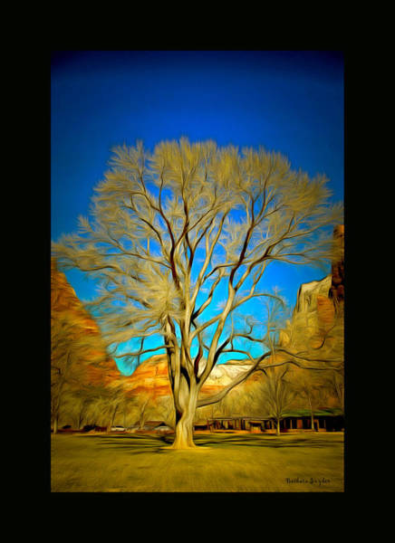 Painting - 96 Year Old Zion Cottonwood Tree Duvet by Barbara Snyder