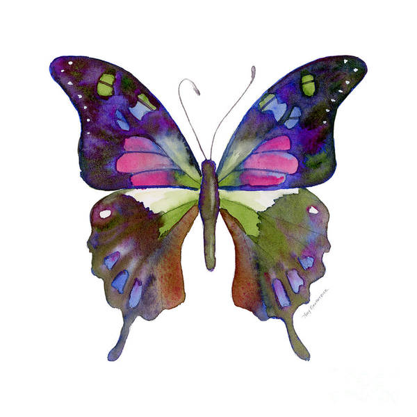 Wall Art - Painting - 98 Graphium Weiskei Butterfly by Amy Kirkpatrick