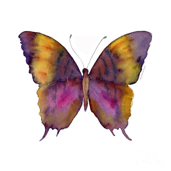 Butterfly Wall Art - Painting - 99 Marcella Daggerwing Butterfly by Amy Kirkpatrick