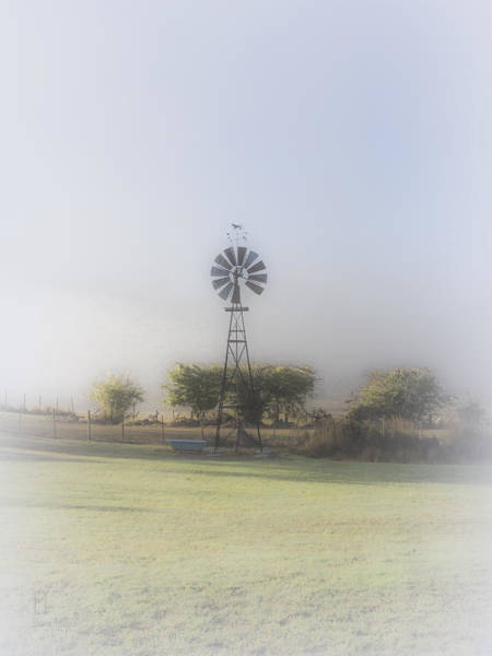 Photograph - A Backyard In Westerway by Elaine Teague