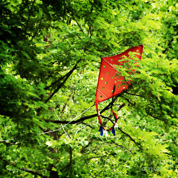 Flying A Kite Photograph - A Bad Day For Mary Poppins by Nancy Stein