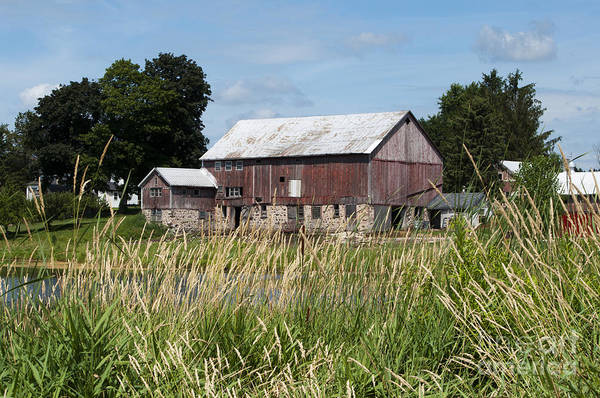 Photograph - A Barn And Pond by Lula Adams