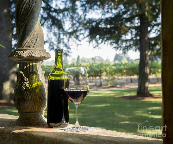 Decanter Photograph - A Beautiful Day In Napa by Jon Neidert