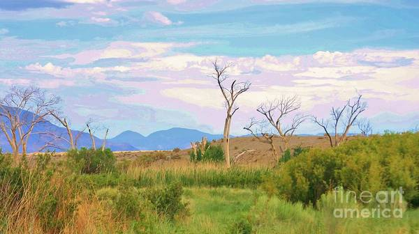 Bishop Hill Photograph - A Beautiful Death by Marilyn Diaz