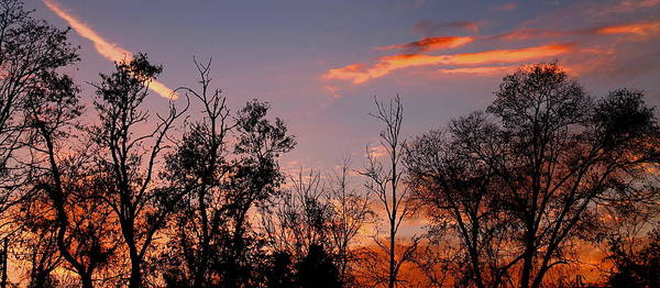 Photograph - A Beautiful Ending by Candice Trimble
