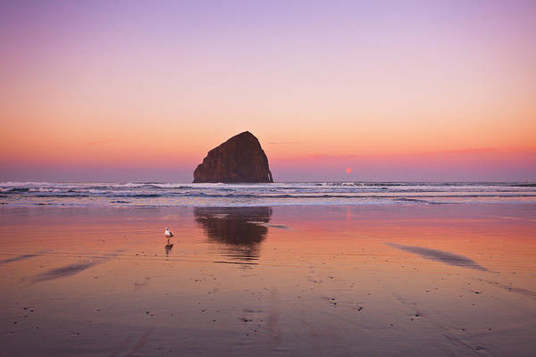 Oregon Coast Photograph - A Beautiful Morning by Darren  White