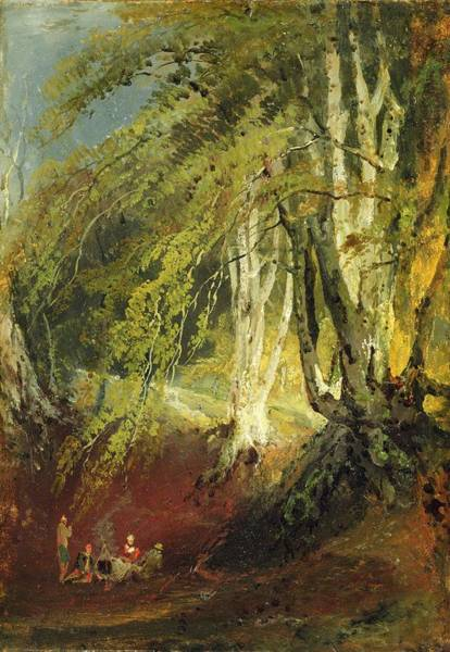 Woodland Drawing - A Beech Wood With Gypsies Seated Round by Joseph Mallord William Turner