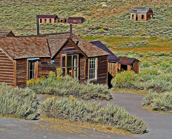 Photograph - A Bodie Homestead by Joseph Coulombe