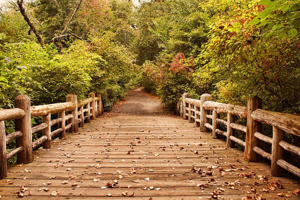 A Bridge Into Autumn Art Print by Zev Steinhardt