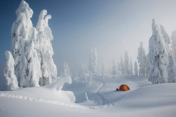 Tent Photograph - A Bright Orange Tent Among Snow Covered by Mint Images - Michael Hanson