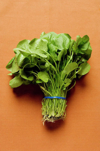 Vegies Photograph - A Bunch Of Spinach by Foodcollection