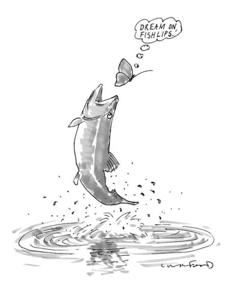 Fish Drawing - A Butterfly Thinks 'dream On Fishlips' As A Trout by Michael Crawford