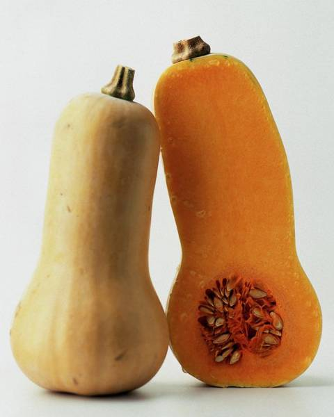 January 1st Photograph - A Butternut Squash by Romulo Yanes