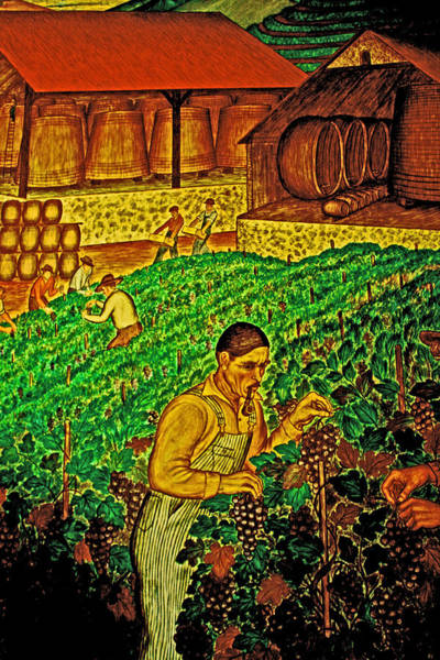 Photograph - A Caring Vineyard Artist by Joseph Coulombe