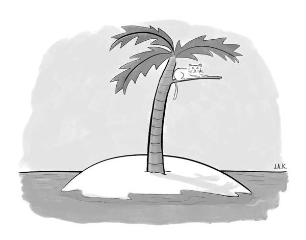 Cats Drawing - A Cat On A Branch Of A Palm Tree by Jason Adam Katzenstein