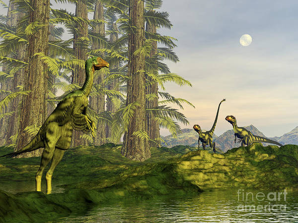 Bird Watching Digital Art - A Caudipteryx Watching Dilong Dinosaurs by Elena Duvernay