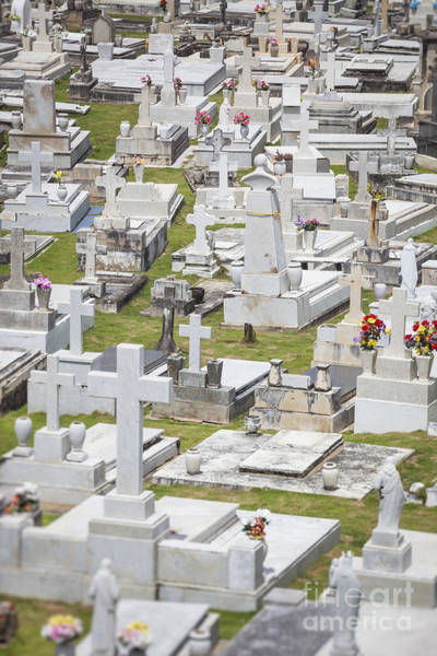 Photograph - A Cemetery In Old San Juan Puerto Rico by Bryan Mullennix