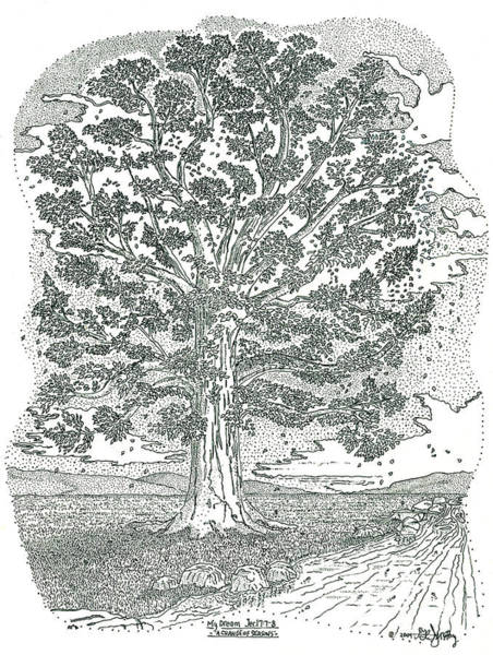 Stipple Drawing - A Change Of Seasons by Glenn McCarthy Art and Photography