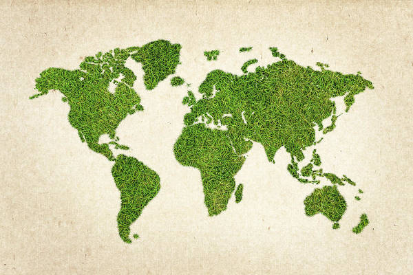 North Africa Wall Art - Photograph - World Grass Map by Aged Pixel