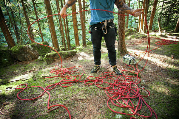 Tree Climbing Photograph - A Climber Prepares His Rope by Christopher Kimmel