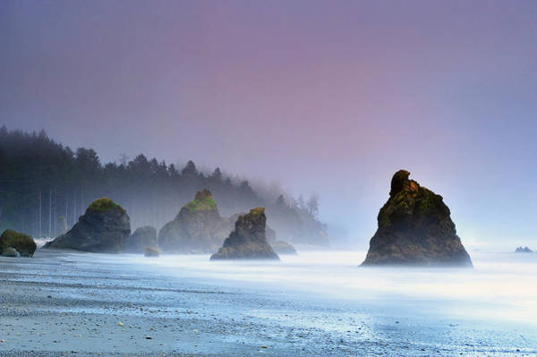 Trees In Fog Photograph - A Colorful Sunset Over The Pebbly Beach by Keith Ladzinski