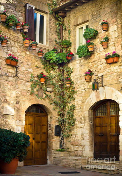 Photograph - A Corner Of Assisi by Prints of Italy