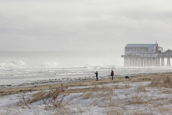 Orchard Beach Photograph - A Couple Walks Their Dog And Takes by Mark Marchesi