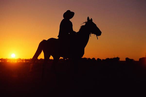 Peace And Harmony Wall Art - Photograph - A Cowboy And His Horse Ride by Medford Taylor